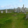 Callanish Looking North by Denise Mazzocco