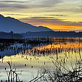 Calm At The Lake by Guido Montanes Castillo
