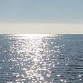Calm Waters by Fortunate Findings Shirley Dickerson