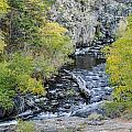 Calming Stream by Glen Wilkerson