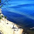 Calvert Cliffs Chesapeake Bay by Thomas R Fletcher
