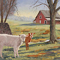 Calves At The Spring House by Tommy Thompson