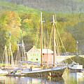 Camden Harbor Maine by Carol Leigh