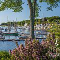 Camden Harbor Spring by Susan Cole Kelly