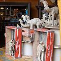 Camel Cola by David Nicholls
