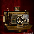 Camera - Polaroid  The Reporter Se by Paul Ward