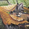 Camo Cat by Terry Lewey