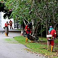 Camouflaged Leaf Blowers Working In Singapore Park by Imran Ahmed