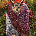 Camouflaged Owl by Les Palenik