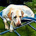 Camp Chair by Molly Poole