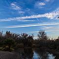 Camp Davis River by Angus Hooper Iii