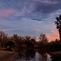 Camp Davis River Sunset by Angus Hooper Iii