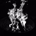 Camp Fire by Joe Galura