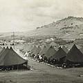 Camp Garcia In Vieques  by Robert Floyd