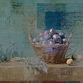 Campagnard - Rustic Still Life - J085079161f by Variance Collections