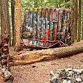 Campsite Near A Train Wreck by Adam Jewell