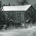 Cana Island Barn by Joan Carroll