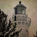 Cana Island Light by Joan Carroll