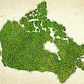 Canada Grass Map by Aged Pixel