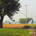 Canada Rural Scene by Aimelle
