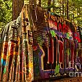 Canadian Box Car In The Forest by Adam Jewell