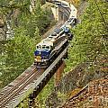Canadan Railroad Above The Cheakamus River by Adam Jewell