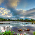 Canadian Geese On A Marylamd Pond by Patrick Wolf