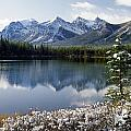 1m3541-canadian Peak Reflected In Herbert Lake by Ed  Cooper Photography