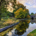 Canal Drifting Leaves by Ian Mitchell