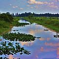 Canal In The Glades by Chuck  Hicks