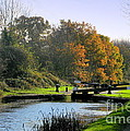Canal Locks In Autumn by John Chatterley