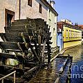 Canal Waterwheel by Brenda Kean