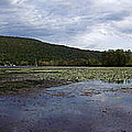 Canandaigua Lake Panorama by Rose Santuci-Sofranko