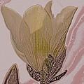 Canary Yellow Magnolia by Sonali Gangane