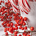 Candy Canes And Red Berries by Garry Gay