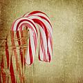 Candy Canes by Kim Hojnacki
