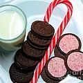 Candycane  Cookies - Milk - Cookies by Barbara Griffin