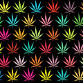 Cannabis Leaf Multi-coloured Pattern by Thisis Notme