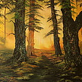 Cannock Chase Forest In Sunlight by Jean Walker