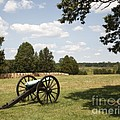 Cannon At Battery Heights At Manassas Battlefield by William Kuta