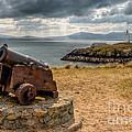 Cannon At Llanddwyn  by Adrian Evans