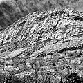 Cannon Cliffs Wind by Shell Ette