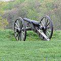 Cannon On Culp's Hill by Dawn Cassidy