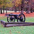 Cannon On The Parade Grounds by Laurie Tracy