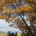 Cannon On Top Of Lookout Mountain by Bruce Roberts