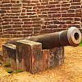 Cannon by Rakesh KR