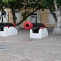 Cannons by Christopher McCartin