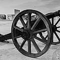 Cannons by Gaurav Singh