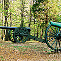 Cannons I by Anita Lewis