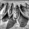 Canoes In Black And White by Debra and Dave Vanderlaan